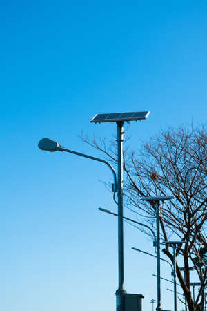 lamp post: Solar lamp post on the blue sky and the tree in the background