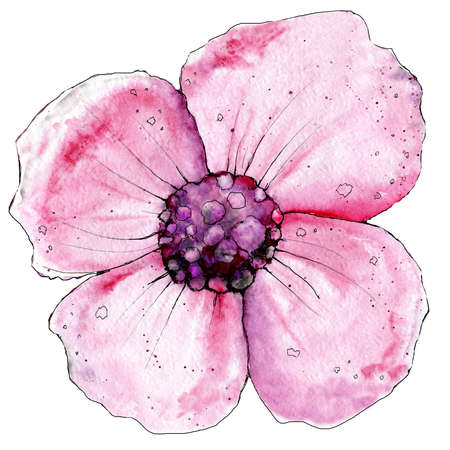 Pink poppy flower. Watercolor illustration for design of print, template, banner, background, invitation, congratulations, wedding greeting card