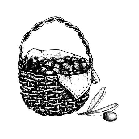 Basket with olives, fruits and leaves. Hand drawn doodle vector illustration. Design concept for cosmetic products, background, banner, label, template, icon Иллюстрация