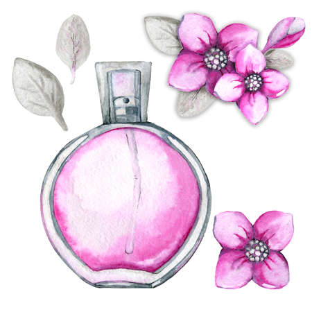 Glass bottle with pink female perfume and a bouquet of flowers. Hand drawn watercolor illustration, set for the design of cosmetic products. Stock Photo