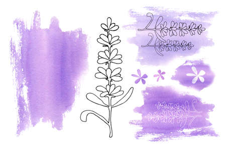 Set of elements from lilac purple spots and lavender flowers isolated on a white background. Hand drawn watercolor illustration for design of business card, flyer, wedding, banner, template, invitation, congratulation, postcard.