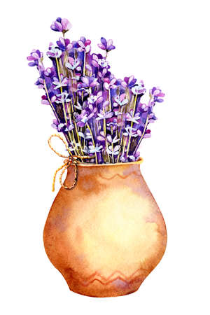 A bouquet of lavender flowers, twigs tied with twine, a rope in a clay ceramic pot. Hand drawn watercolor illustration for design of wedding concept, birthday, Valentines day, greetings, invitations, cards.