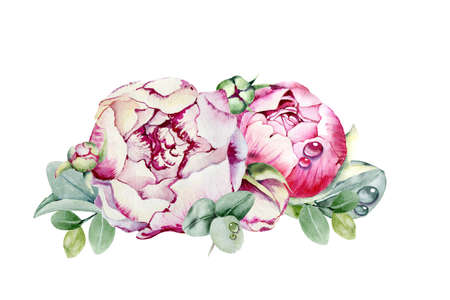 Peony flower, pink bud. Hand watercolor illustration isolated on white background. Design for wedding printed matter, invitation, congratulations, clipart, postcard, birthday. Stock fotó