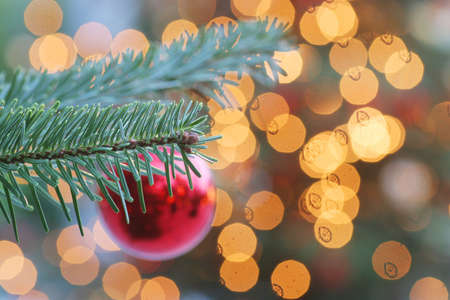 Christmas ball on a christmas tree with candle lights in the background - focus on the branch in the foreground Stock Photo - 659233