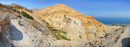 Middle East arabian panoramic scenic view with space for text on blue sky. Beautiful gorge Ein Gedi, in arid Judean desert near Masada and Qumran Caves. Place where biblical David hid from King Saul