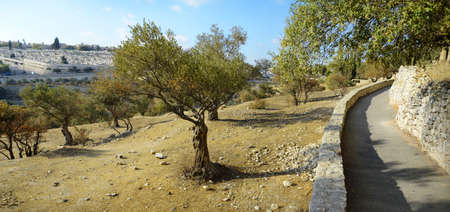 Old sacred capital of Judea. Archaic downtown panoramic view with space for text on blue sky backdrop. Famous jew holy land place of judaic King David, Solomon