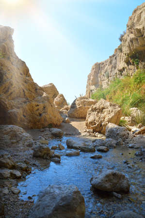 Middle East arabian scenic view. Pure brook flows in beautiful gorge En Gedy, in arid Judean desert on shore of Dead Sea near Masada and Qumran Caves. Place where biblical David hid from King Saul
