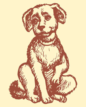 Vector monochrome hand-drawn outline picture style drawing pen on paper. Fluffy puppy with a collar sitting on the floor and looks at the host, wagging his tail