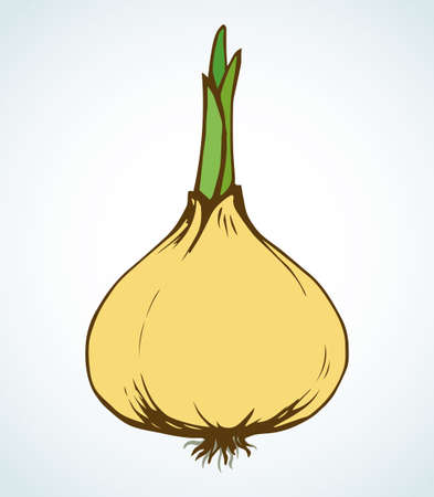 Ripen eco raw fresh common bulb leek fruitful icon isolated on white backdrop. Freehand vibrant color hand drawn symbol sign sketchy in art scribble retro style. Closeup view with space for text