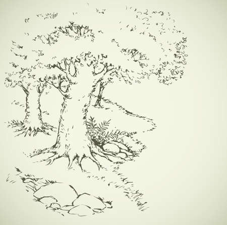Narrow track among large lush old deciduous plants. Freehand outline ink hand drawn picture sketchy in art doodle retro style pen on paper. Scenic rural view with space for text on earth backdrop