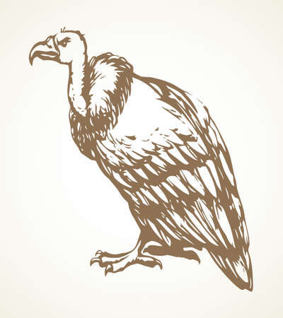 Old griffin gryphus eagle on light sky backdrop. Freehand outline black ink hand drawn aegypius claw logo pictogram design in retro art doodle engrave print style pen on paper text space. Closeup view