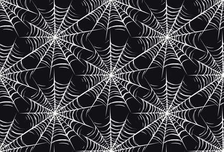 Big horrible full white web snare on dark backdrop. Freehand outline black ink hand drawn picture object sketchy in art scribble retro style pen on paper. Closeup view Vektorgrafik
