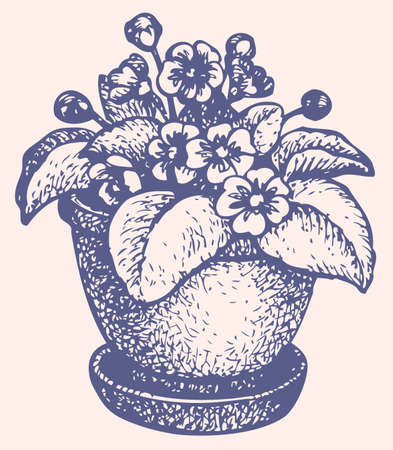 Vector monochrome drawing hatching. Beautiful flowers in the pot Ilustracja