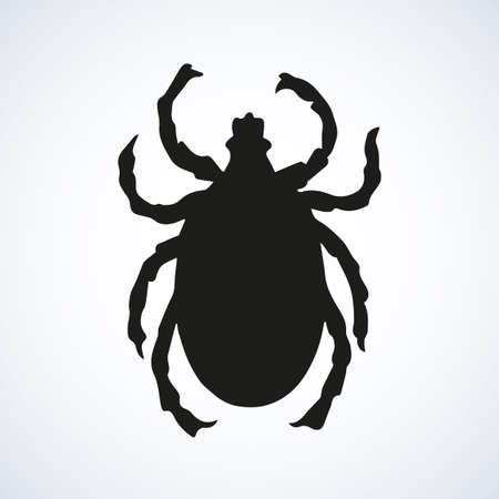 Big wild forest Acarina louse isolated on white human skin backdrop. Dark ink hand drawn picture sketch in art retro style pen on paper. Close-up micro view with space for text