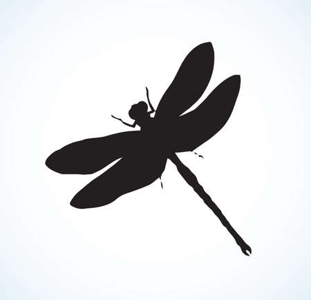 Big cute anisoptera on light backdrop. Dark ink hand drawn insignia print in retro artistic contour etching style. Close up detail view with space for text Illusztráció