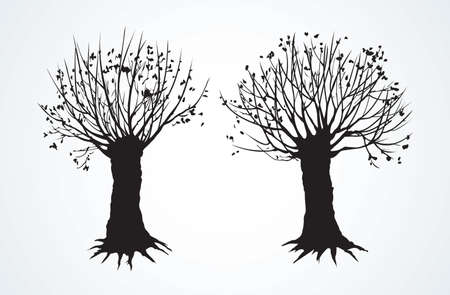 Big cut off deciduous oaktree isolated on white parkway backdrop. Dark ink hand drawn picture sketchy in art retro print graphic style with space for text on light sky