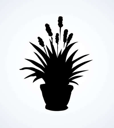 Lush fresh food onion yucca potplant on white topiary background. Dark black ink hand drawn hyacinth life design emblem  pictogram in retro art contour engrave print style with space for text