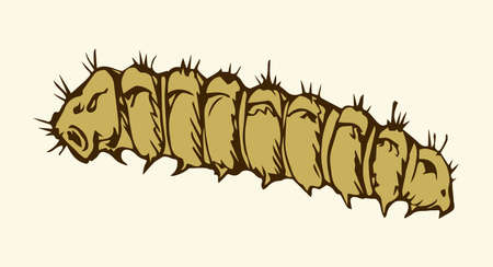 Big wild garden hairy butterfly grub isolated on white backdrop. Freehand outline black ink hand drawn picture sketchy in art scribble retro style pen on paper. Close-up micro view with space for text