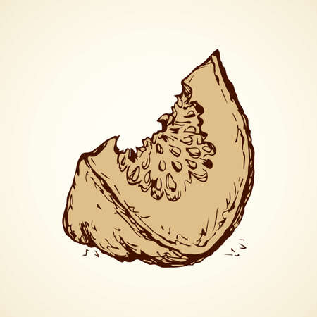 Tasty raw ripe fresh sappy musk galia fruitful isolated on white backdrop. Freehand linear black ink hand drawn picture sign sketchy in art scribble style pen on paper. View closeup and space for text