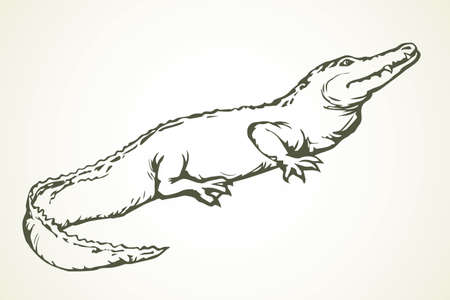 Squamate nile old giant rough scaly Crocodylia on white sand. Freehand outline dark black ink hand drawn zoo logo emblem pictogram sketchy in retro art doodle cartoon style pen on paper space for text
