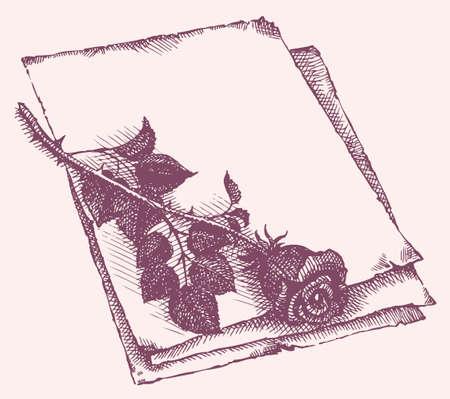 Vector frame. Sketch of cut roses on a sheet of old paper Vector Illustration