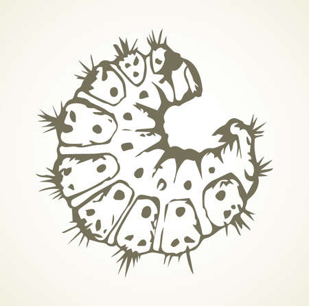 Big wild garden hairy butterfly grub on light white text space backdrop. Outline black ink hand drawn logo pictogram emblem design in art scribble retro style pen on paper. Close-up micro line view