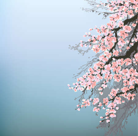 Vector background in Japanese style. Blossoming cherry branches of an old tree against the morning sky Ilustrace