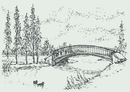 Vector landscape. Sketch of a quiet corner of the park with a bridge over the river and poplars along the road