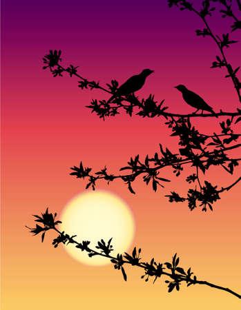 Vector drawing. Spring romantic scene. Nightingale meeting at sunset