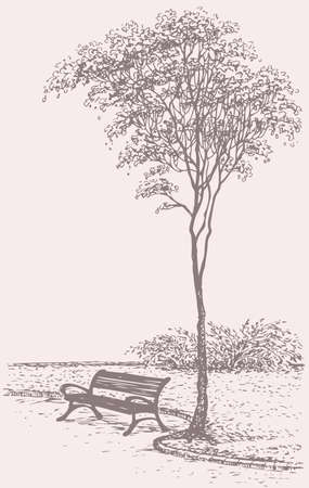 Vector landscape. Sketch the bench in a park near a tall tree