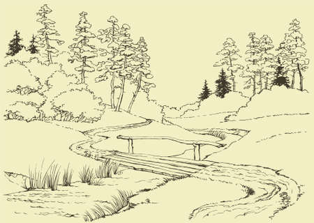 Vector drawing. Forest landscape with stream, through which runs the bridge