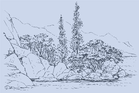 Vector landscape. Cypress trees and shrubs on the rocky beach 向量圖像