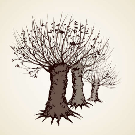 Big cut off deciduous oaktree isolated on white parkway backdrop. Freehand linear black ink hand drawn picture sketchy in art retro doodle graphic style pen on paper with space for text on sky border Illustration
