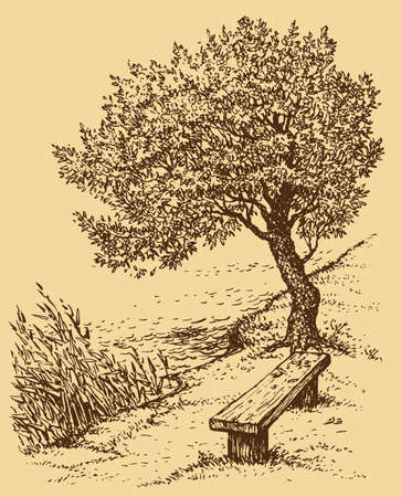 Vector landscape. Old bench near the tree on the bank of the lake Vektorgrafik