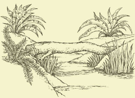 Beautiful scenery small rivulet with reeds, lush green grass and palm shrubs on riverside. Vector freehand ink drawn backdrop sketch view in art doddle style pen on paper with space for text on sky Illustration