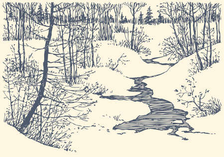 Vector landscape. Winter is not a frozen creek in the forest of young trees