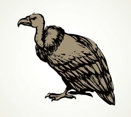 Old griffin gryphus eagle on light sky backdrop. Freehand outline black ink hand drawn. 矢量图像