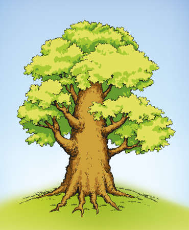 Vector colorful illustration of the mighty tree with lush green foliage Ilustracja