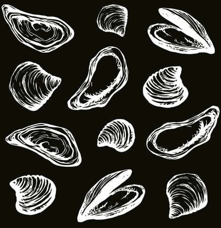 Big fresh perl Ostreidae mollusc on dark backdrop. Outline black ink hand drawn french diet delicacy dining icon sign design sketchy in retro art cartoon doodle engraved style pen on white paper