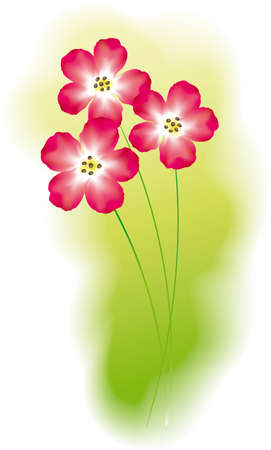 Vector image of bright red flowers 向量圖像