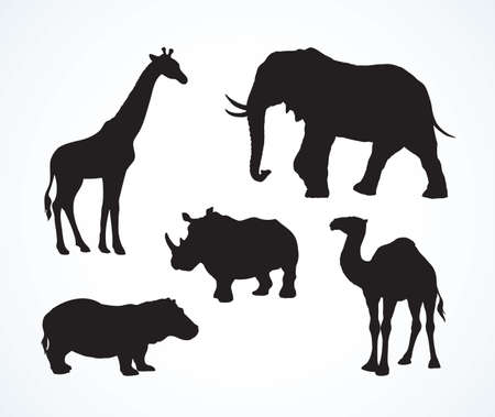 Big tall heavy powerful ungulate Africana tropical jungle fauna beast isolated on white background. Dark black ink hand drawn emblem picture in art retro print style. Side view on space for text Vector Illustratie