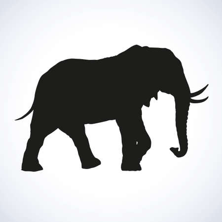 Old africana big powerful mammoth beast isolated on white background. Black ink hand drawn image sketch in art retro engraving style pen on paper. Side view with space for text