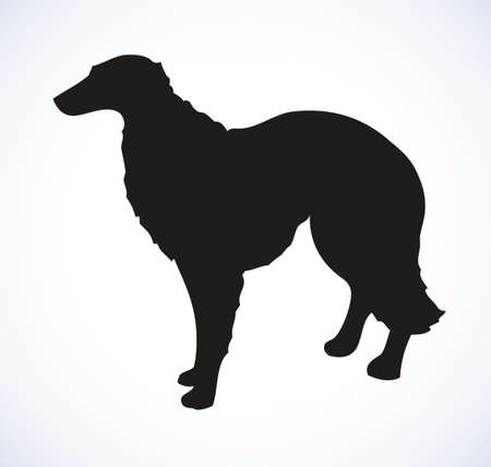 Shaggy big dog isolated on white background. Black ink hand drawn picture sketch in art retro doodle style pen on paper. Closeup side view with space for text