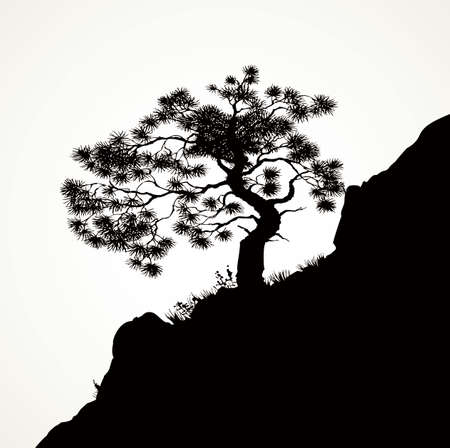 Old alone Pinus plant on craggy bluff chasm isolated on white evening sky backdrop. Dark ink hand drawn scenic picture icon sign logo in art retro etched print style on paper space for text 写真素材 - 156715842