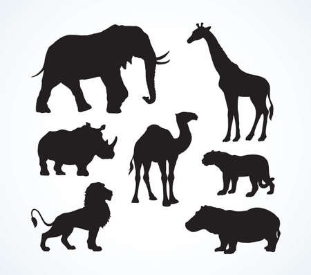 Big tall heavy power tusk ungulate Africana tropical jungle fauna beast on white background. Dark black ink hand drawn high danger leo creature  emblem pictogram in art retro engrave contour style Illustration