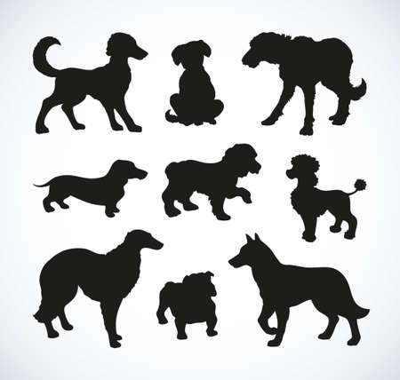 Different kinds of standing dogs set isolated on white background. Black ink hand drawn picture sketch in art retro doodle style pen on paper. Closeup side view with space for text