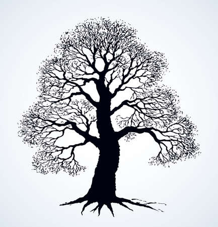 Big deciduous oak tree stem picture on space for text on sky backdrop. Freehand outline dark black ink pen hand drawn icon sign design sketchy in artistic retro doodle style on light paper card