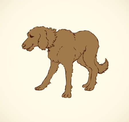 Shaggy big dog isolated on white background. Freehand outline ink hand drawn picture sign sketchy in art retro doodle style pen on paper. Closeup side view with space for text