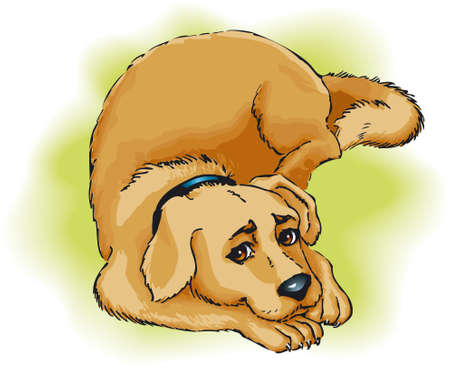 Vector drawing. Beige dog lying on the grass