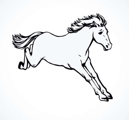 Gorgeous pride white courser smartly rear up on ranch paddock. Freehand outline black ink hand drawn andalusian ride beast  emblem pictogram sketchy in art doodle retro cartoon style pen on paper 矢量图像